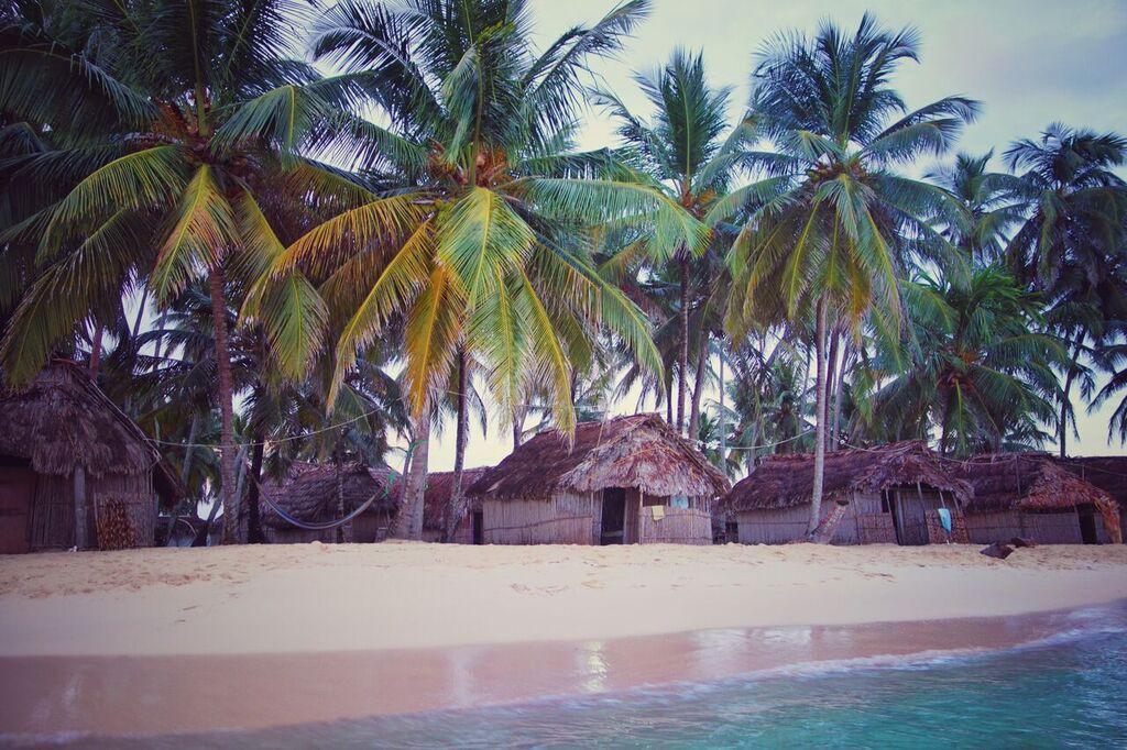 Palmen und Hütten