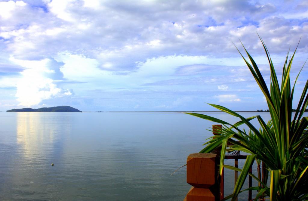 Langkawi Pflanze am Wasser