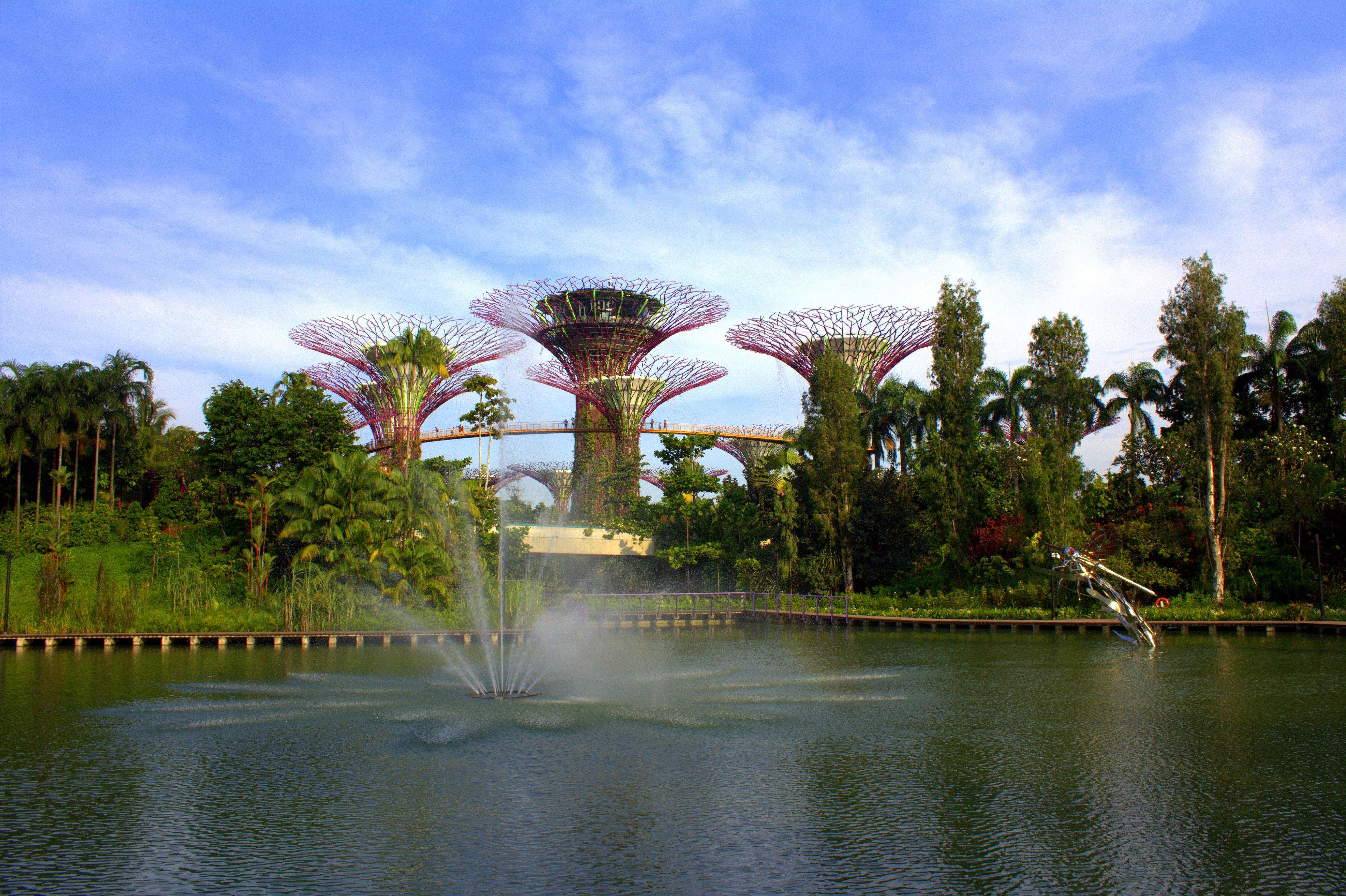 Meine Singapur Fotos So Nah Und So Fern