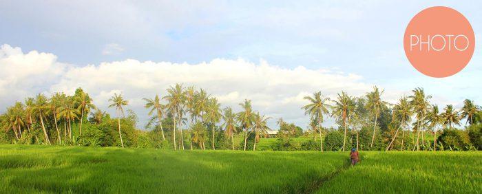 Titelbild-Bali-Bilder