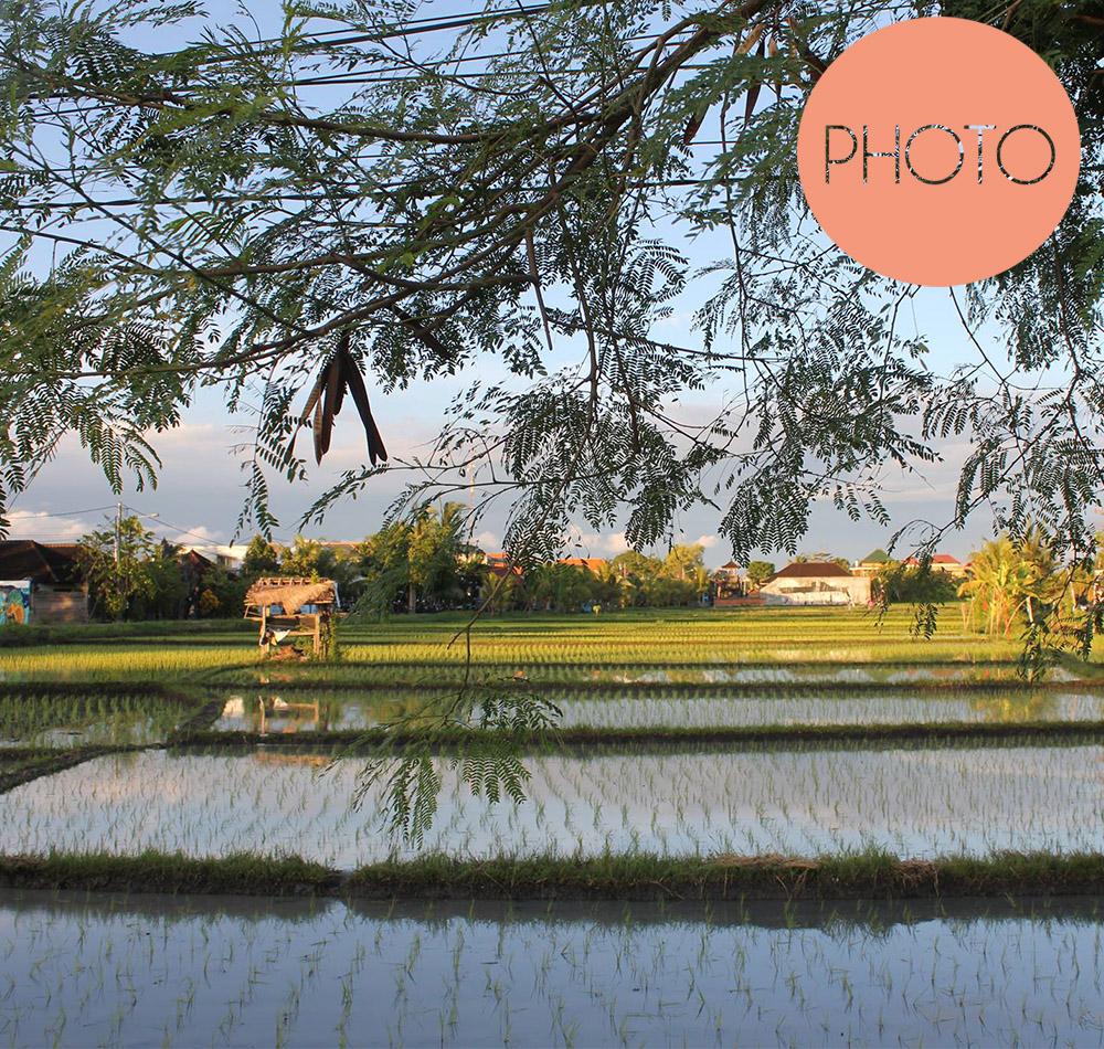 Faszination Bali - Noch mehr Bali Bilder
