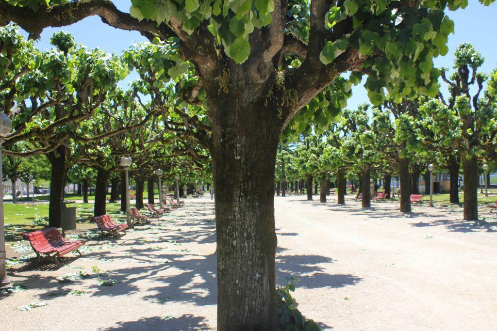Coimbra Park2