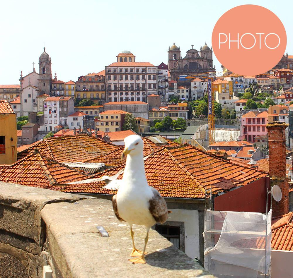 Porto Bilder