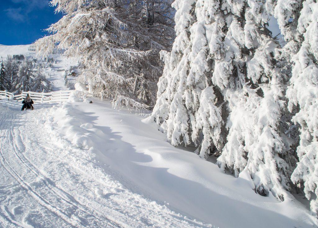 Rodeln im Schnee
