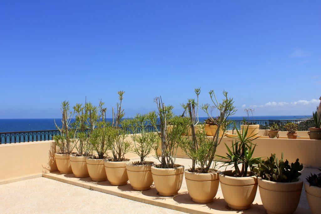 Mövenpick Resort Sousse