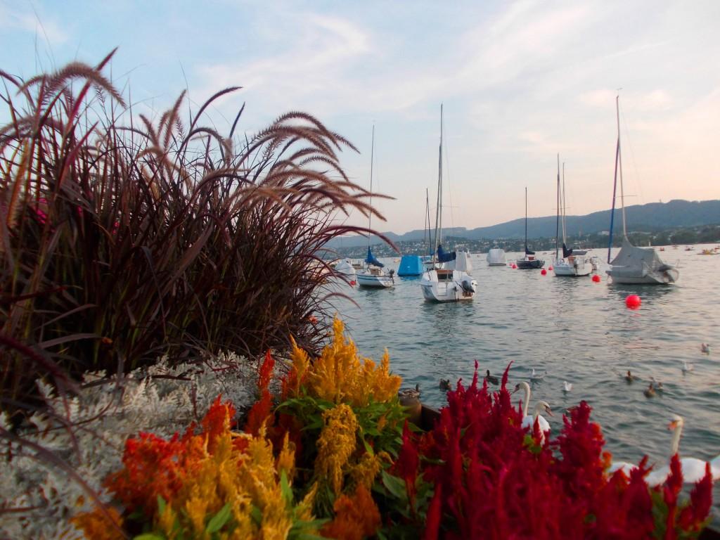 Schweiz Zürichsee Boote