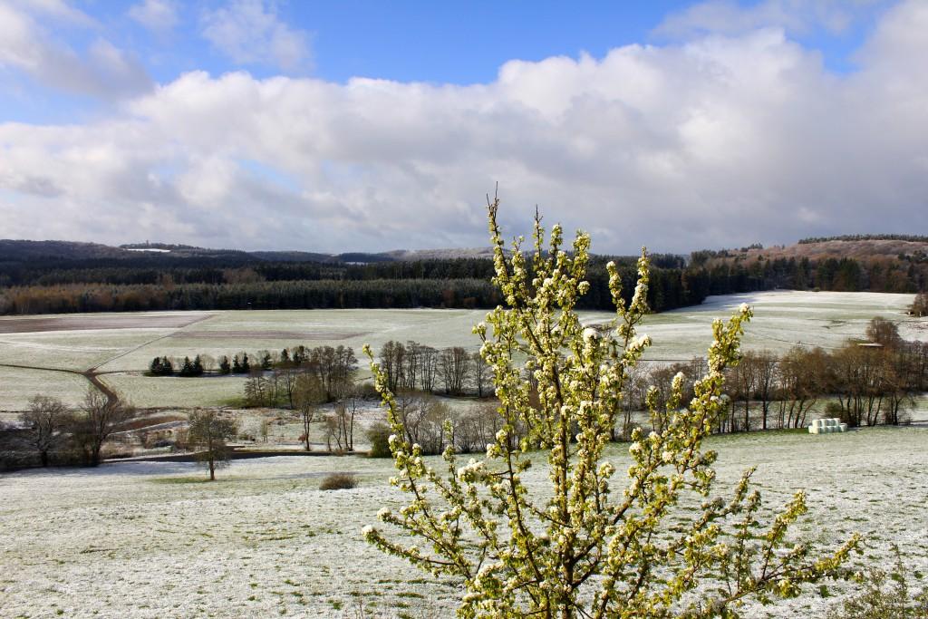 Ausblick Lindner Schnee