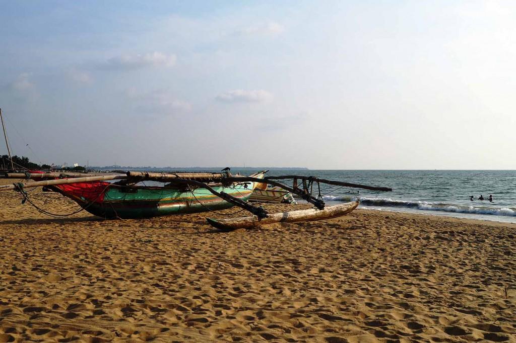 ReiseSpatz_Negombo