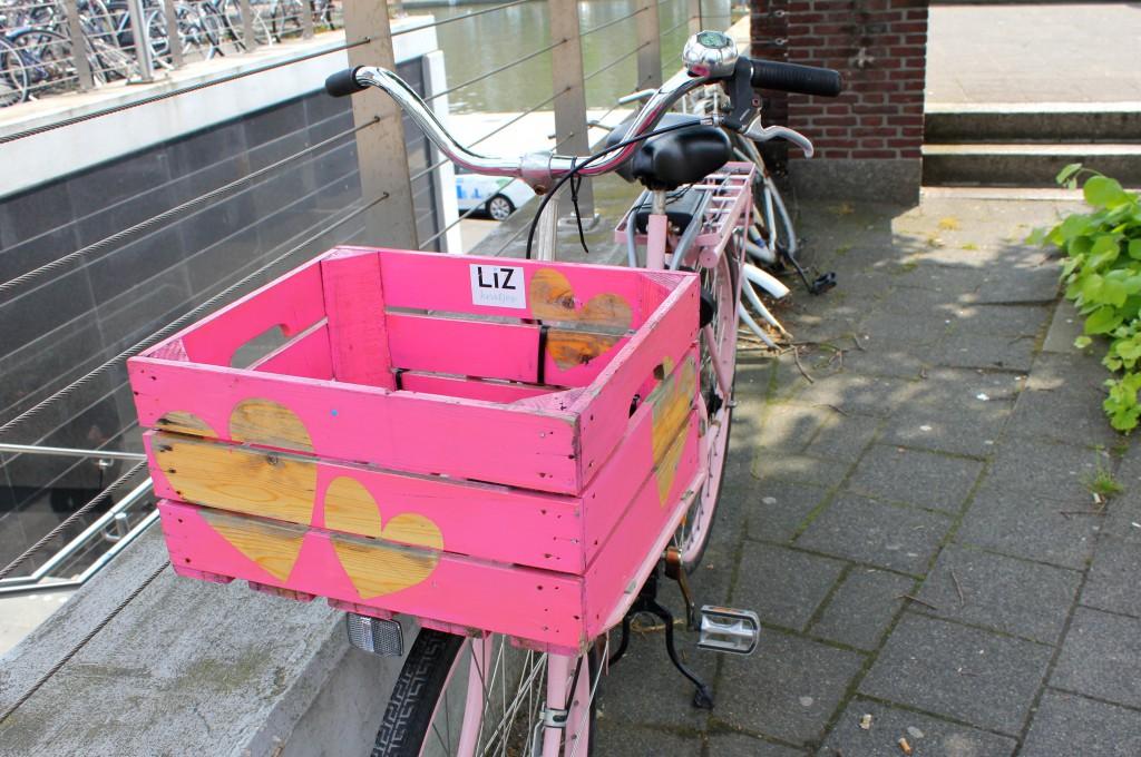 Rotterdam Fahrrad Love