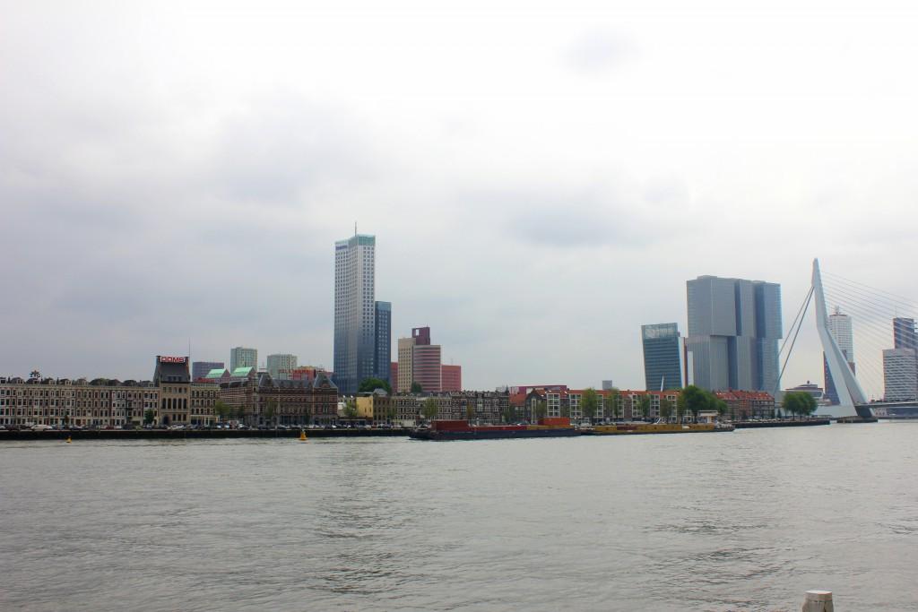 Der Fluss Maas mit der Skyline von Rotterdam im Hintergrund