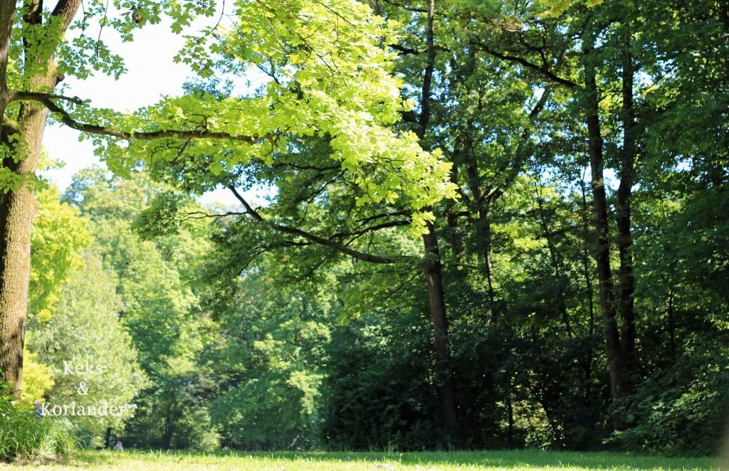 Englischer Garten Nord München