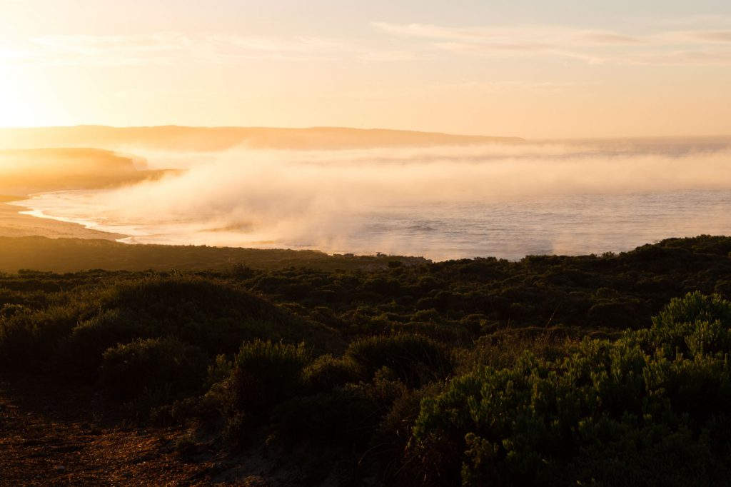 australien-bloggertipps-tasmanien-tasmanien-tasmanien-hansonbay