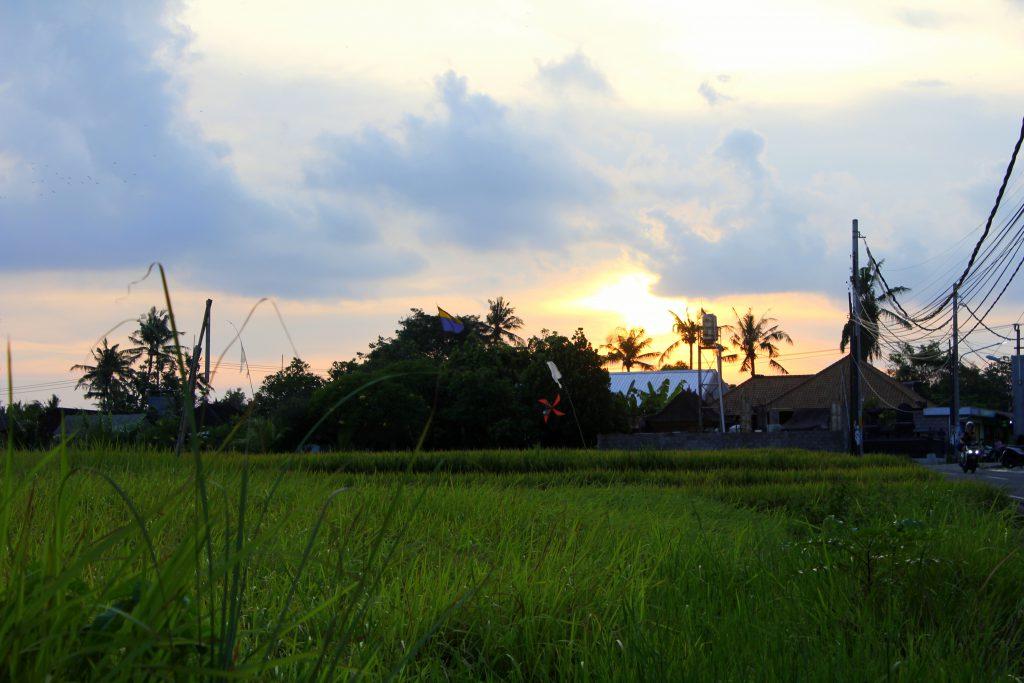 Sunrise Canggu