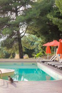 chalkidiki hotel pool
