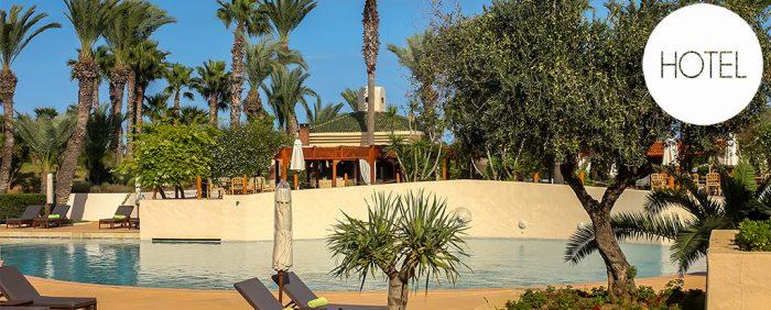 Hotelpool mit Palmen-Tunesien-blauer Himmer-Poolliegen