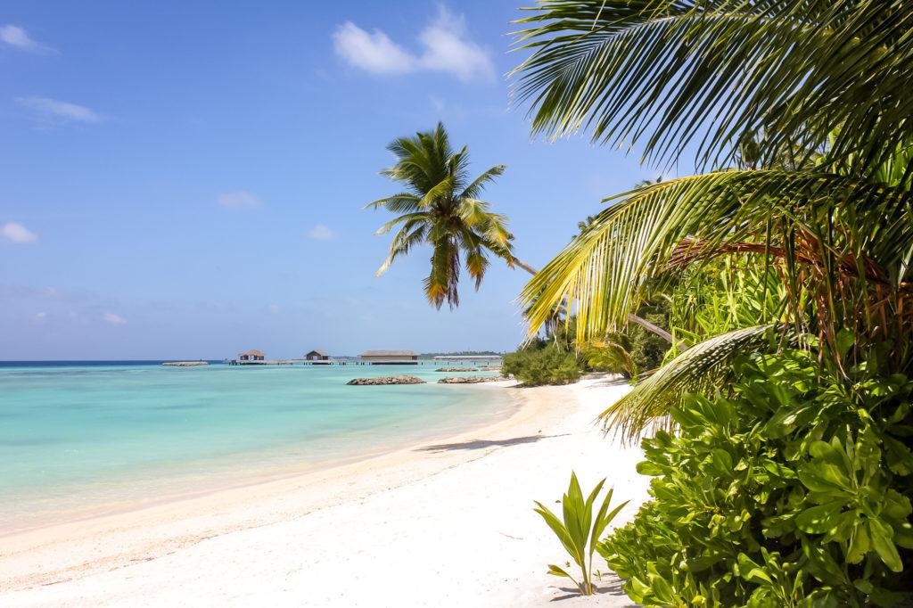 malediven bilder strand