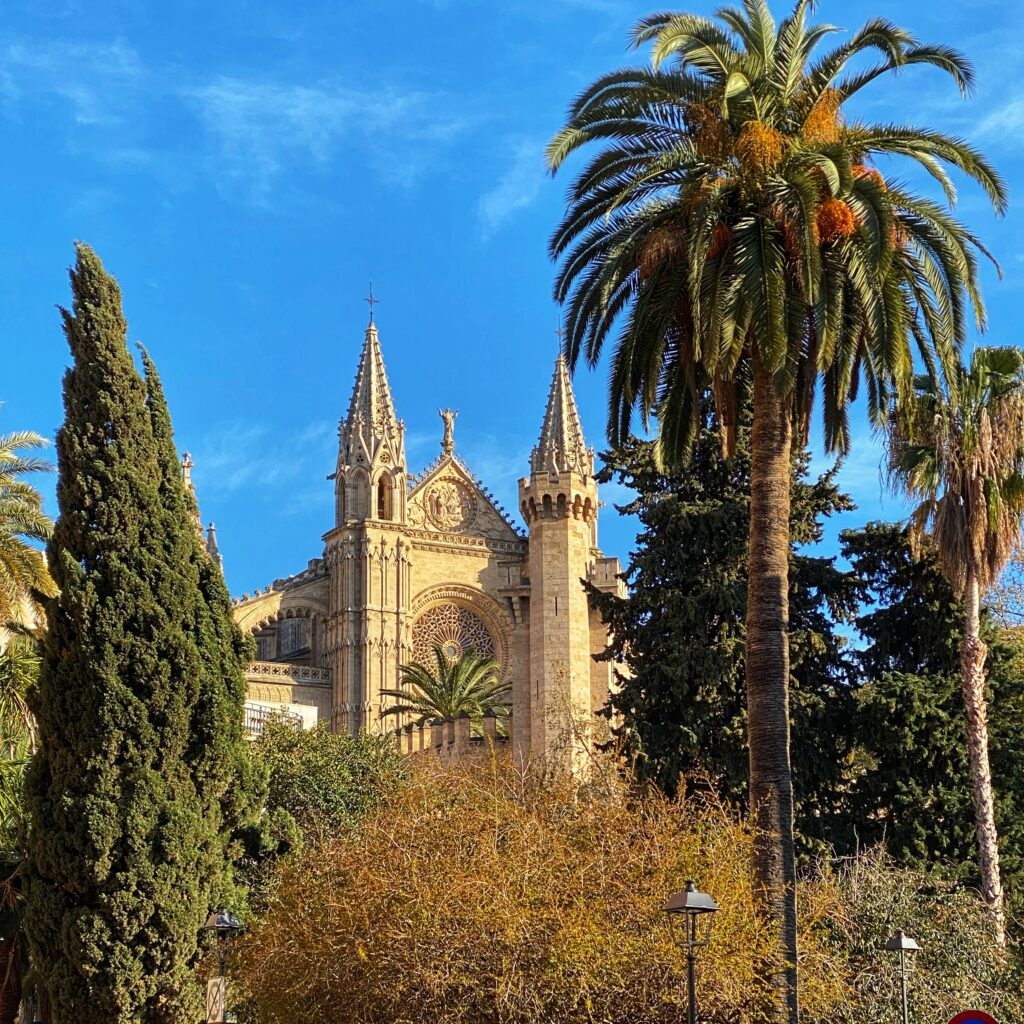 palma mallorca kathedrale